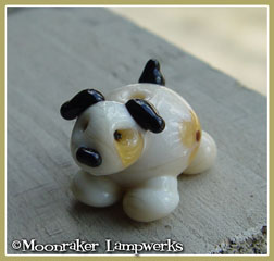 Ivory Spotted Puppy