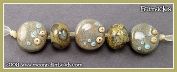 Barnacle Buttons